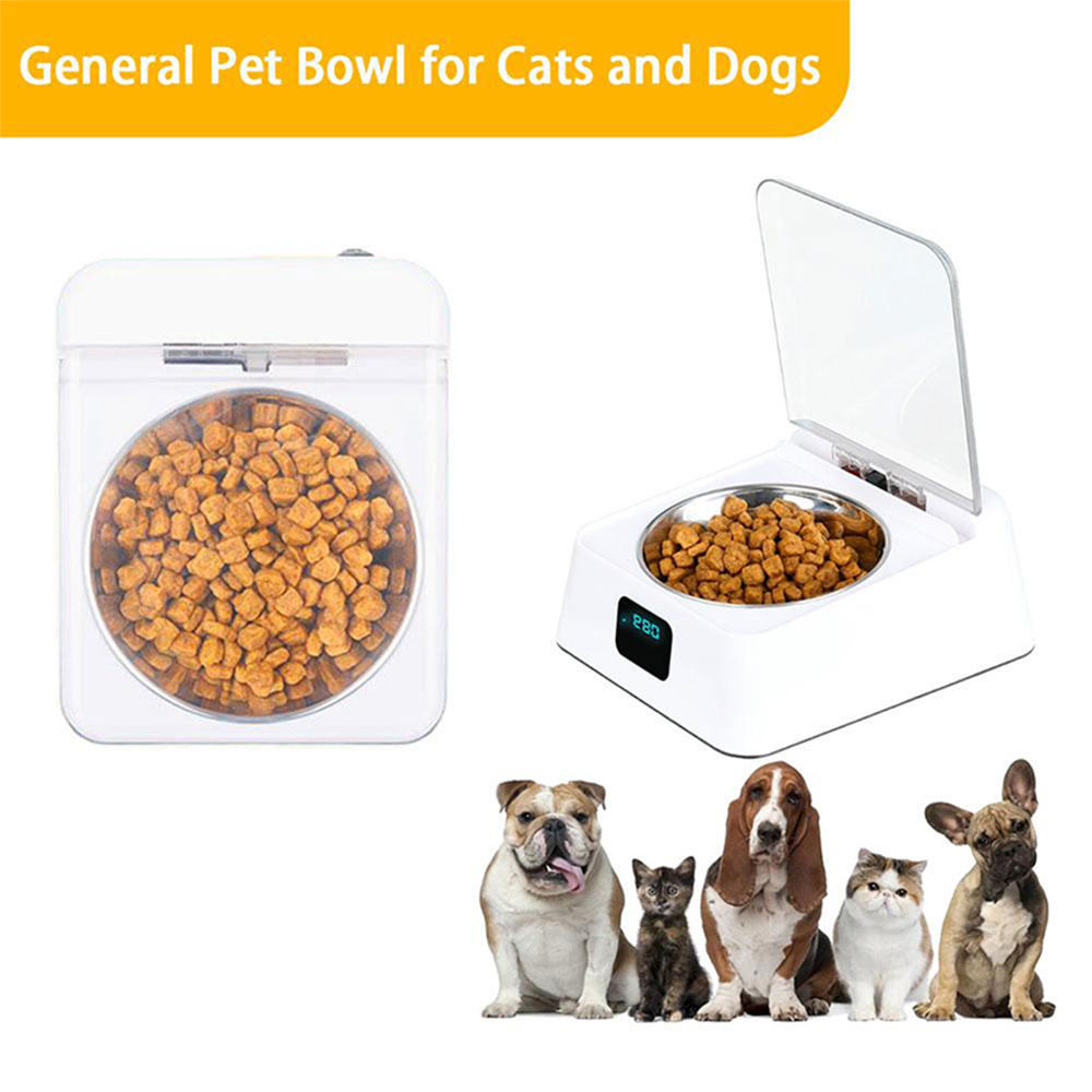 Infrared Sensor Automatically Opens Cover Cat and Dog Feeder Smart Pet Food Bowl_8
